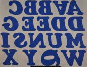5.1cm Iron-On Letters in Royal