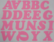 5.1cm Iron-On Letters in Pink