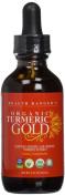 Health Ranger's Organic Turmeric Gold liquid extract 60ml
