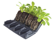 8 Books (32 Cells) Deep 12cm Rootrainers Root Trainers