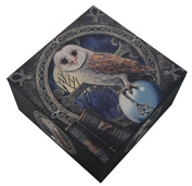 Nemesis Now Lisa Parker The Spell Keeper Owl Mirror Trinket Jewellery Box