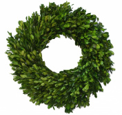 Preserved Garden Boxwood Wreath 36cm