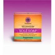 Evolution Salt PEP-45 Peppermint Bath Soap