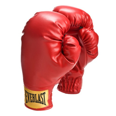 Everlast Small Boxing Gloves