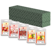 ScentSationals Wax Storage Box with 5 Wax Packs, Fruit