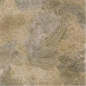Winton Tile 842176 Floor No Wax Self Stick 12X12 Nat
