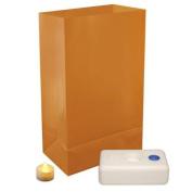 12 Flame Resistant Tan Decorative Luminaria Bags with Flameless LED Tea Candles