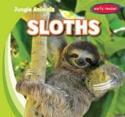 Sloths (Jungle Animals)