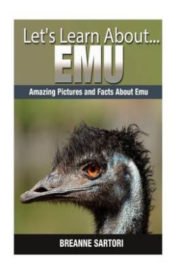 Emu: Amazing Pictures and Facts about Emus