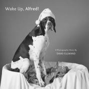 Wake Up, Alfred!