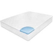BioPEDIC MemoryLOFT Memory Foam Euro Top Mattress Pad