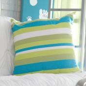 Magnolia Casual Beach Boulevard Stripe Pillow