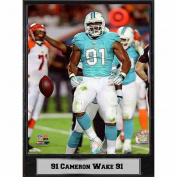 NFL 23cm x 30cm Plaque, Cameron Wake Miami Dolphins