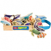 T.S. Shure Sea Creatures Wooden Magnets MagnaFun Set, 20 Pieces
