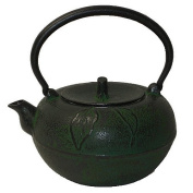 Large Green Apple Cast Iron Stove Top Teapot with Trivet, 1600ml Capacity