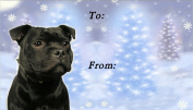 Staffordshire Bull Terrier Dog No. 2. Christmas Labels (42) - Self Adhesive