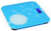 Canwelum Smart Step-on & Auto-off Accurate Digital Bathroom Scale, Digital Body Scale, Body Weight Scale, Digital Weight Scale with Dandelion Fashionable Style