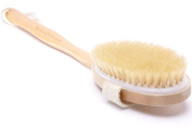 Bath Body Brush Natural Bristles and Long Handle. Perfect for Dry Back Brushing, Shower and Bath. Indulge Yourself in Spa Like Experience with our Body Scrub Brush with Detachable Handle-Your New Best Friend for Exfoliating, Cellulite and Massaging