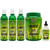 "BOE Crece Pelo Fitoterapeutico Natural Shampoo & Rinse & Treatment & Gotero ""Set II"""