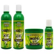 """BOE Crece Pelo Fitoterapeutico Natural Shampoo & Rinse 350ml & Leave-in 120ml & Treatment 470ml """"Set"""""""