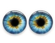 25 mm Glass Cabochon ,Ocean Blue Human Eyes ,1 pair for Prop Building , crafting , jewellery