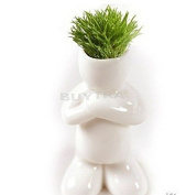 sany58520 Mini Novel Bonsai Grass Doll Hair Man Plant Rely