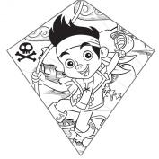 Colour-Me-Kite Tyvek Diamond Kite