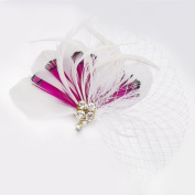 Janeo Headwear AUSTIN Rose Fascinator; Flirtatious Feathers Fan arrangement with Diamantes Crystals and Netting. Beautiful! Budget Price. Colours