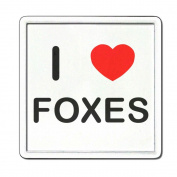 I Love Heart Foxes - Clear Plastic Tea Coaster / Beer Mat