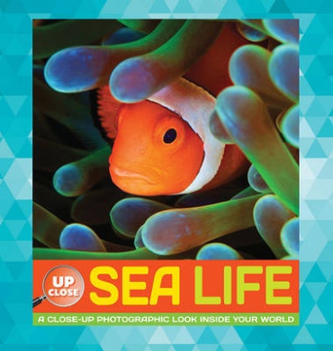 Sea Life: A Close-Up Photographic Look Inside Your World