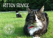 Kitten Advice Notecards