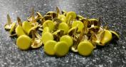 Scrapbooking - Large Round Brads Lime Bulk 50ct