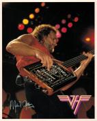 Van Halen Michael Anthony Guitar Portrait Vintage 80s 20cm x 25cm Photograph