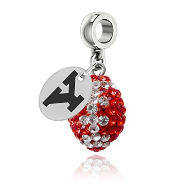 Youngstown State Penguins Football Drop Charm