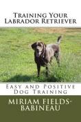 Training Your Labrador Retriever