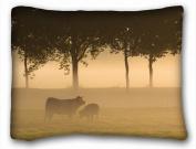 Decorative Standard Pillow Case Animals bulls grass s fog forest field trees 50cm *70cm One Side