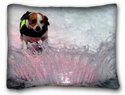 Decorative Standard Pillow Case Animals dog board water spray 50cm *70cm One Side