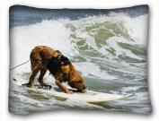 Decorative Standard Pillow Case Animals dog board sea Sport 50cm *70cm One Side