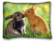 Decorative Standard Pillow Case Animals bunnies couple s kiss cute 50cm *70cm One Side