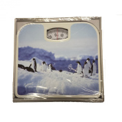 Penguin Design Weighing Bathroom Scale 130kg Max Capacity