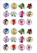 24 x Sonic the hedgehog fairy cake toppers printed on icing