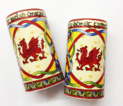 Celtic Weave Welsh Dragon Salt and Pepper Cruet Set
