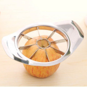 HuntGold 1X Kitchen Fruit Apple Pear Enucleated Corer Slicer Stainless Steel Cutter