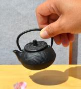 Tiny water dropper - Miniature Cast Iron Teapot - black hobnail Mini Tetsubin
