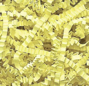 0.2kg Crinkle Cut Paper Shred - Citron