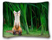 Decorative Standard Pillow Case Animals fox view forest 50cm *70cm One Side