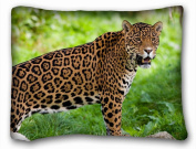 Decorative Standard Pillow Case Animals jaguar wild cat s predator 50cm *70cm One Side