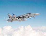 F-18 Hornet patrols airspace near the North Arabian Sea