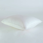 Sealy Prosturepedic Luxury Cool Touch Low Profile Pillow - Hypoallergenic Down Alternative - Cooling Stay Cool Pillow - Medium Density