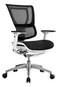 iOO Eurotech Office Ergonomic Chair Black Mesh and White Frame